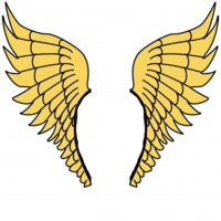 golden-wings-1458257504AuR.jpg